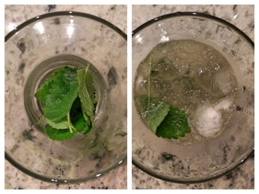 Assembling the Mojito