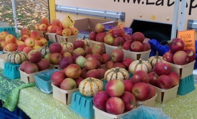 Beautiful selection of apples from Wrights' Farm