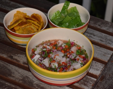 Costa Rican Ceviche, Patacones and Salad