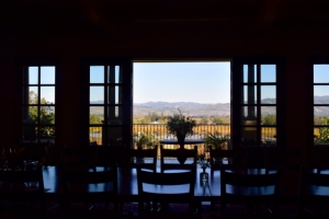 Stunning Staglin - view from the tasting room
