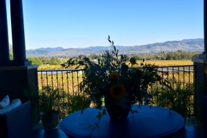 Spectacular View from Tasting Room Staglin Family Vineyard