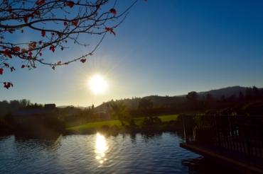 Sun Setting over Kunde Family Vinery, Sonoma