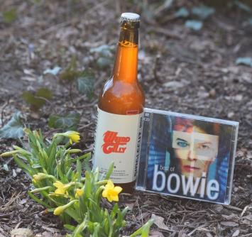 Singlecut - Weird & Gilly (& Bowie)