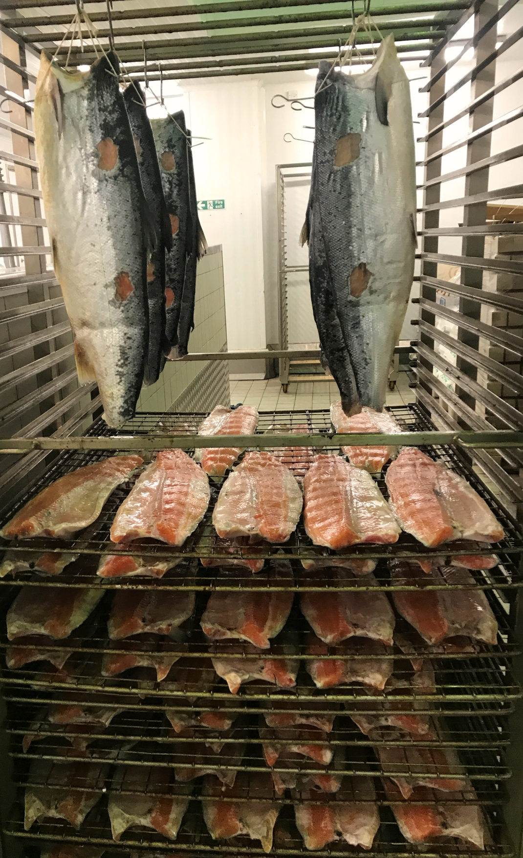 4. Salmon before smoking